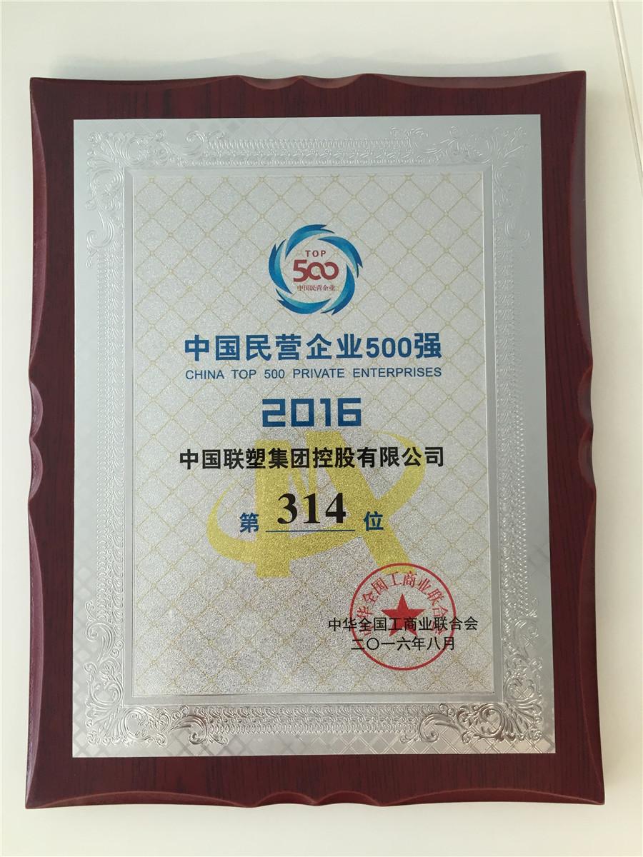 2016中国民营企业500强第314位