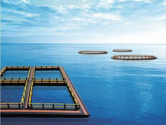 联塑拓展海洋空间